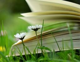 Fête des mères : notre sélection de livres pour faire plaisir