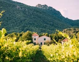 Lectures de nos régions : (re)découvrez la France à travers notre sélection de romans