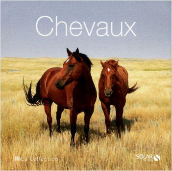 Chevaux - La Collection
