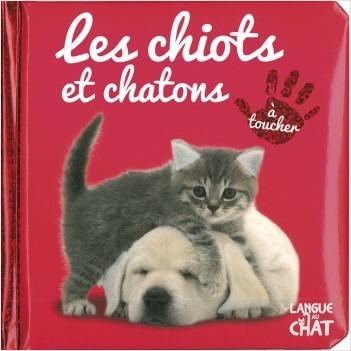 Bébé touche-à-tout - Les chiots et chatons