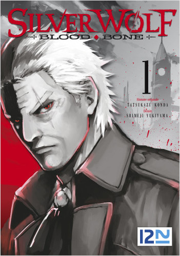 Silver Wolf Blood Bone - tome 01