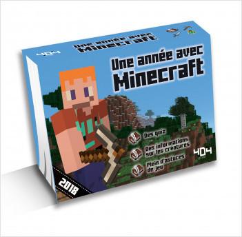 Une année avec Minecraft